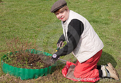 Treatment of seedlings in the spring