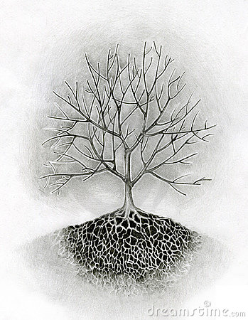 tree drawing with roots. Drawing of a tree. Keywords: