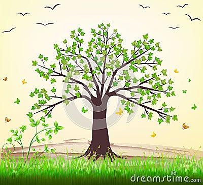 Free Tree Stock Photography - 13130302