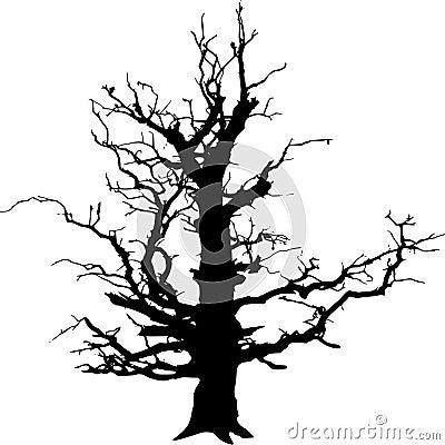 Free Tree Royalty Free Stock Photo - 2378185