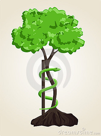 Orthopaedic Tree Symbol Orthopedic Surgery Sym...
