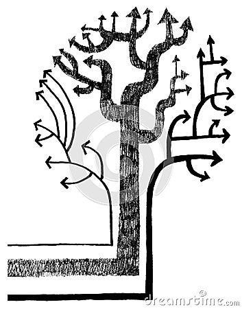 Tree of arrows (vector)
