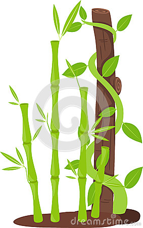 Tree with bamboo