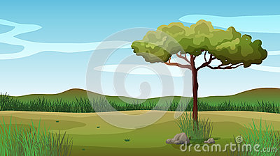 A tree and a beautiful landscape