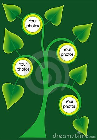 Tree border photo