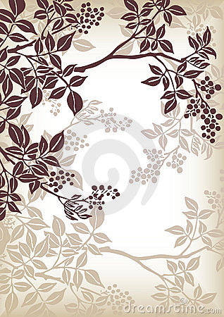 Free Tree Branch Pattern Royalty Free Stock Images - 8211639