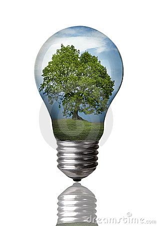 Tree in A Bulb