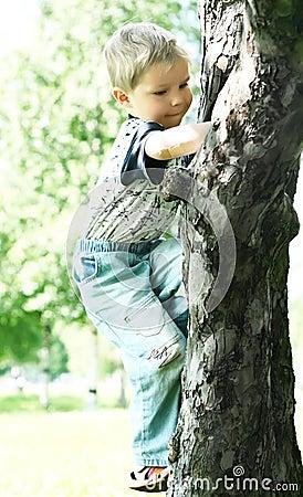 Мальчик дерево
