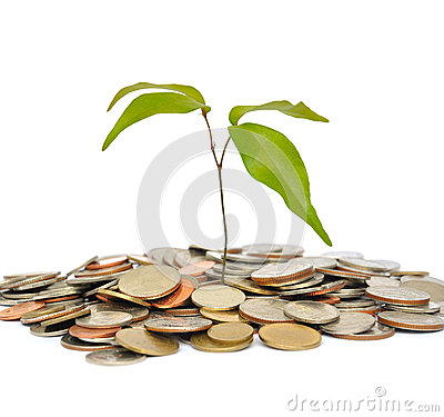 Tree on coin