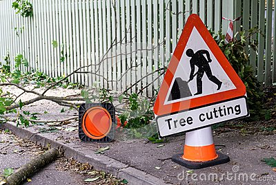How to Start a Small Tree Service Business