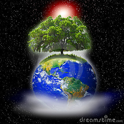 Tree on earth