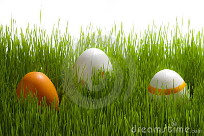 Tree easter Eggs on green grass