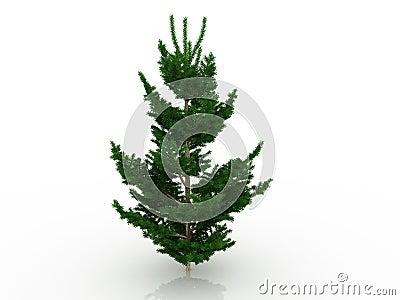 Tree för 8 stor jul