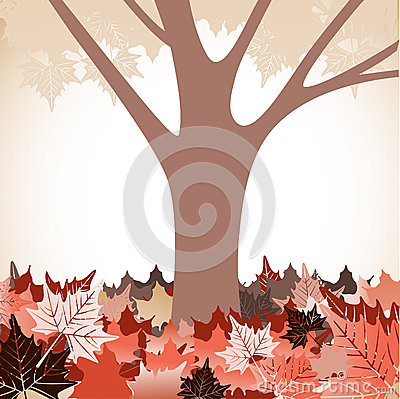 Tree with fallen leaves Autumn