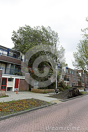 Tree fell on houses in Amsterdam the Netherlands