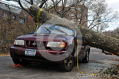 Tree felt down to the car Editorial Photography