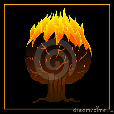 Tree on fire icon