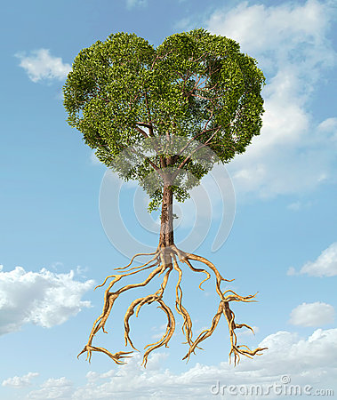 tree with foliage with the shape of a heart and roots as