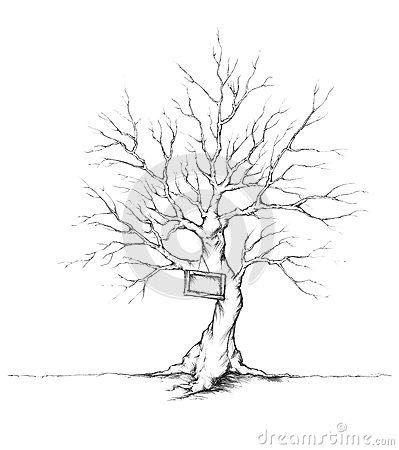 Free Tree For Wedding Guests With Shield On The Trunk Stock Photo - 59923890