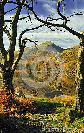 Free Tree Framed View, Snowdonia National Park Royalty Free Stock Photo - 26161345