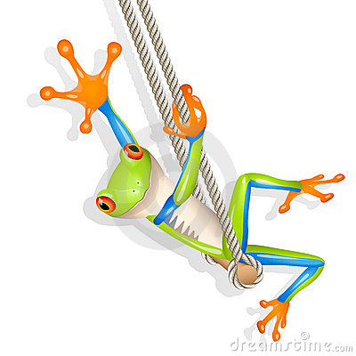 Tree frog on a swing