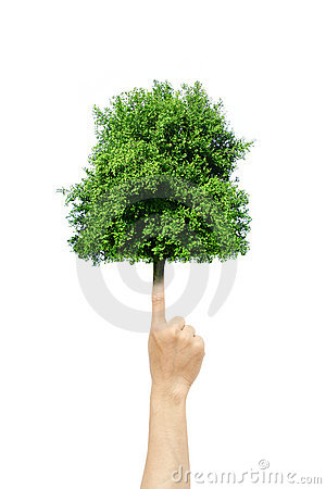 Tree grow from finger