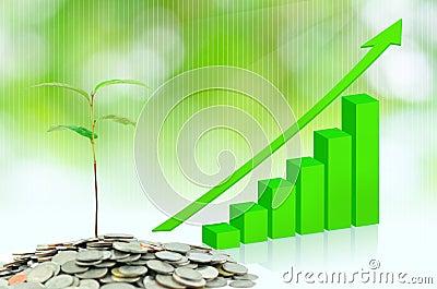 Tree growing on moneys
