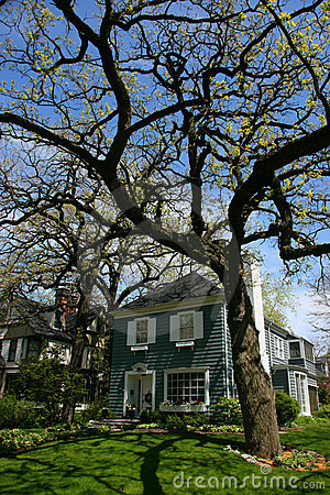 Tree and house in Oak Park