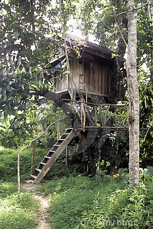 Tree house, Thailand