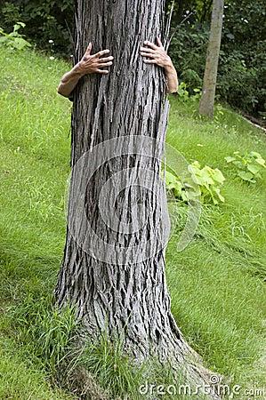Tree Hugger Environmentalist, Hug Save Environment