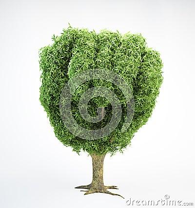 Tree human fist
