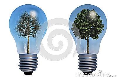 Tree in lamp