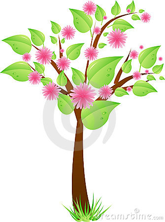 Tree with leaves and pink flowers