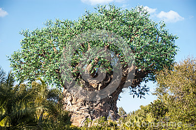 Tree of Life Animal Kingdom Editorial Stock Image