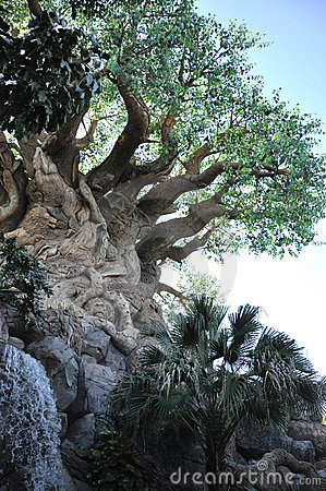 Tree of Life in Disney Animal Kingdom Editorial Image