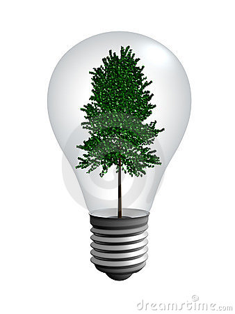 A tree into the light bulb
