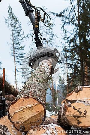 Free Tree Log Hydraulic Manipulator Stock Image - 64926891