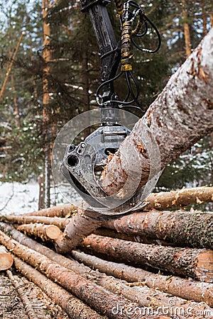 Free Tree Log Hydraulic Manipulator Stock Image - 68068481