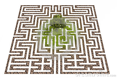 Tree lost in endless labyrinth