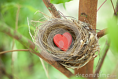 Tree Love Nest Heart