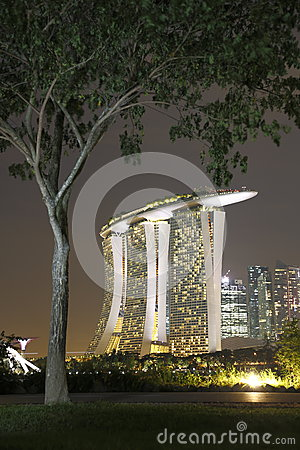 Tree and Marina Bay Sands