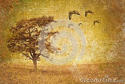 Tree motive on old vintage background