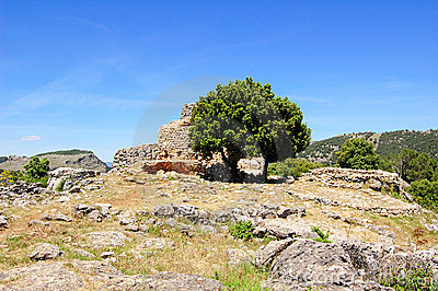 Tree and Nuraghe