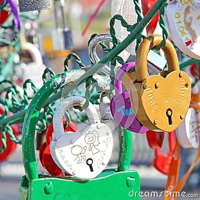 Free Tree Of Love Royalty Free Stock Photo - 32704105