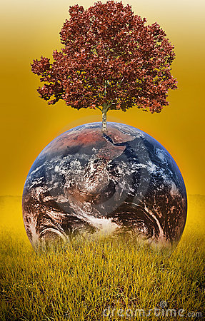 Free Tree On Earth Royalty Free Stock Photography - 6085787