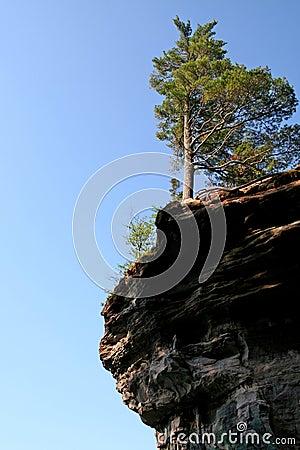Free Tree On Edge Of Cliff Stock Image - 934771