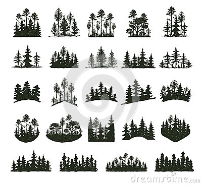 Free Tree Outdoor Travel Black Silhouette Coniferous Natural Badges, Tops Pine Spruce Branch Cedar And Plant Leaf Abstract Stock Photo - 87576740