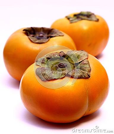 Tree Persimmon Fruits (Diospyros kaki)