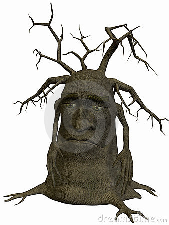 Tree-Poor Me