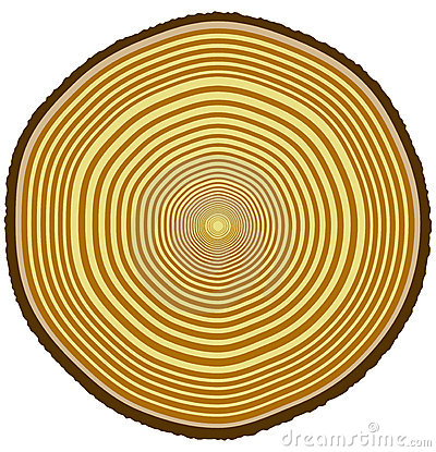 Free Tree Rings Royalty Free Stock Images - 2908759